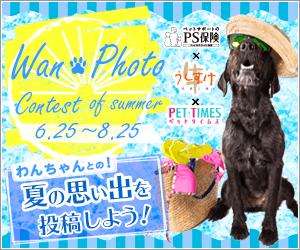 2018わんフォトコンテスト!Summer☆