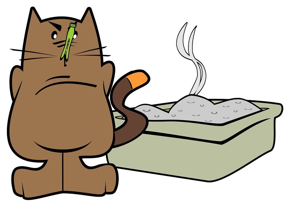猫の排泄物の処理方法は、トイレに流す?ゴミとして出す?