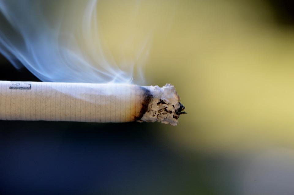 犬の前で吸わないで!犬だってタバコは嫌なんです