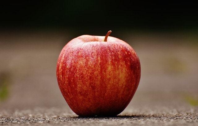 実はりんご好き!?猫にりんごあげてみた