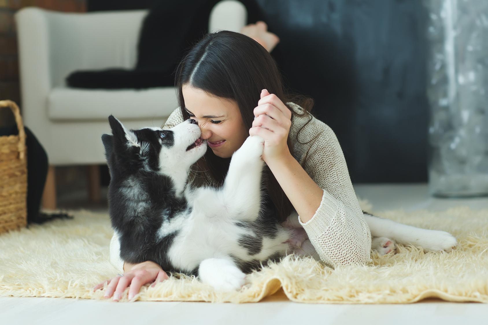 【東京都内】猫カフェだけじゃない!犬と触れ合える「犬カフェ」が人気!
