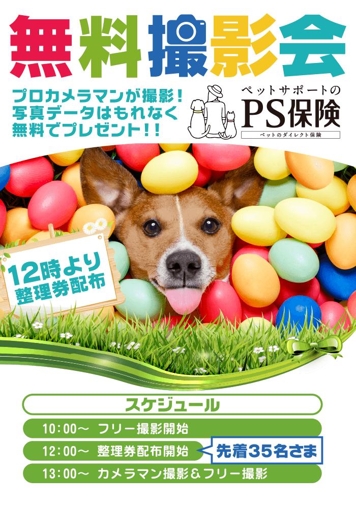 【告知】ペット保険のPS保険、4/15・16 「代々木公園わんわんカーニバル」にて無料撮影会を開催!