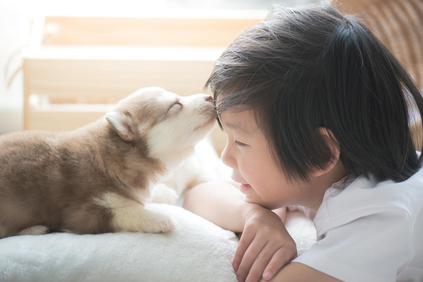 子供に良いことがいっぱい!ペットを飼う事で子育てに与える影響とは?
