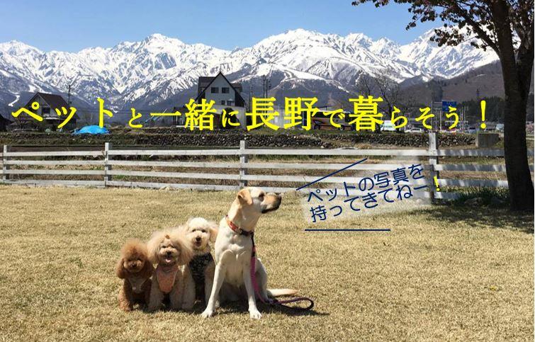 【注目のイベント】『楽園信州移住セミナー』ペットと一緒に長野で暮らそう!