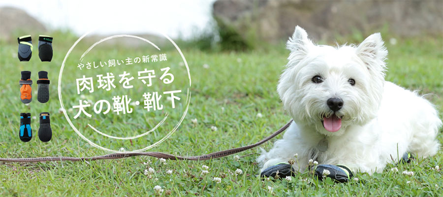 【話題の商品】夏のアスファルトからワンちゃんの肉球を守る!犬専用靴