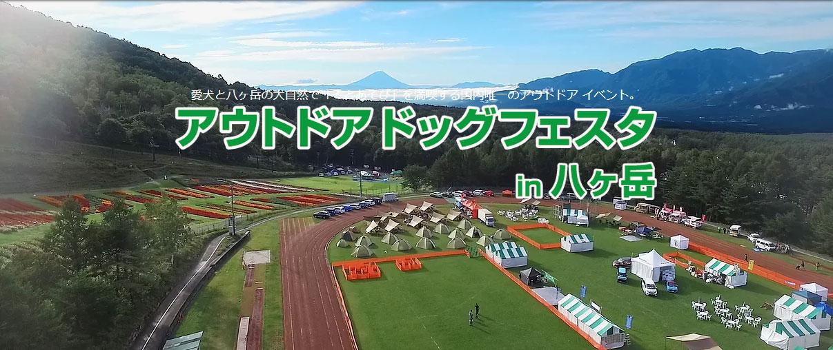【話題のイベント】アウトドアドッグフェスタ in 八ヶ岳