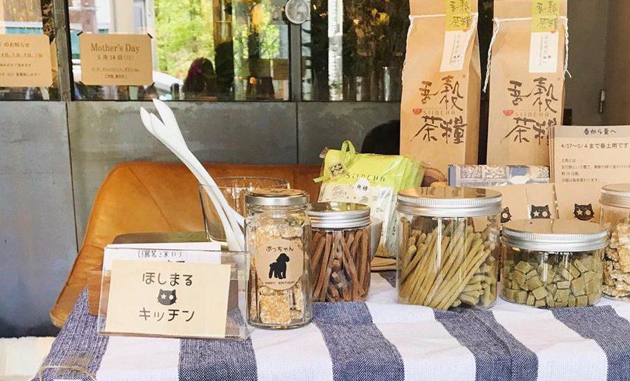 【注目のお店】大阪・北浜で犬や猫の健康を考えたペット用品店「犬猫養生のお店 ほしまる」がオープン