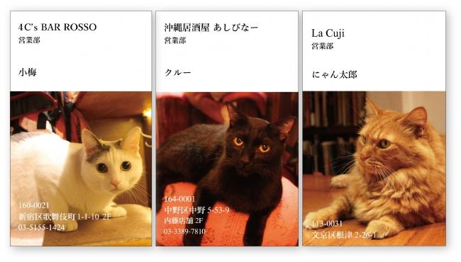 """猫呑みできる名店で""""ねこ名刺""""が貰える!12/8から配布開始!!"""