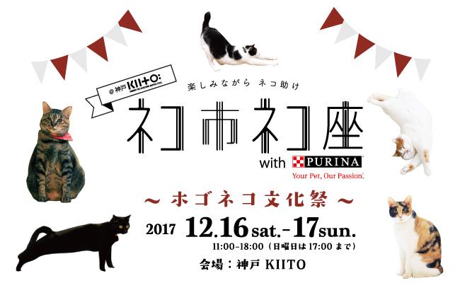 関西最大級!ネコ助けのための猫祭り!12月16日17日に神戸で開催決定