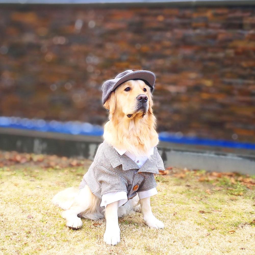 2月9日は服の日!犬に洋服は必要?