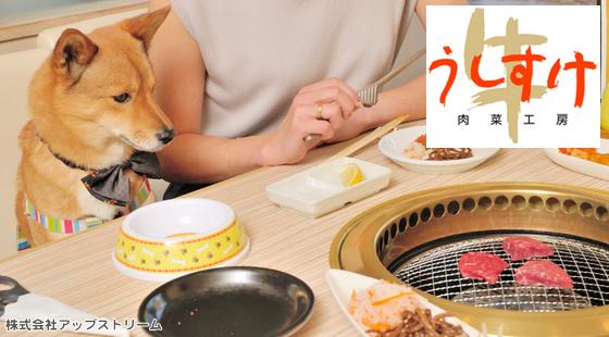 愛犬と一緒に楽しく焼き肉に行きたい!愛犬と食べられる焼き肉店「うしすけ」
