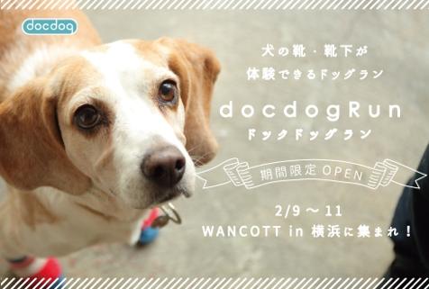 犬の靴下を販売しているdocdogと大型複合施設WANCOTTが3日間限定で夢のコラボ