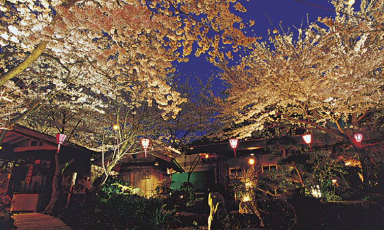 【大阪】愛犬と個室でお花見をしながら、鉄板焼きが食べられる夢のようなお店とは?!