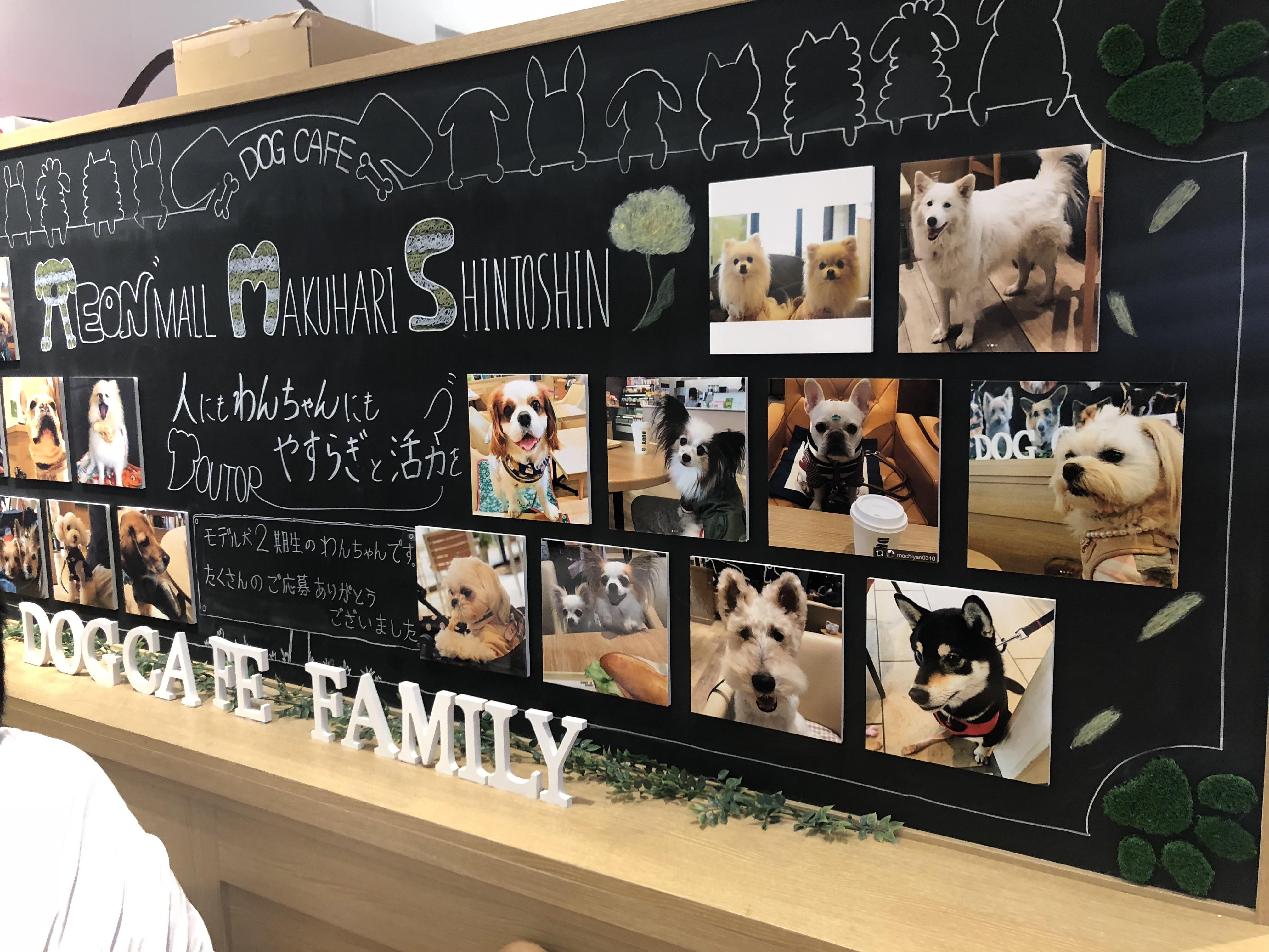 天候を気にせず愛犬と遊びたい!千葉県のイオンPET MALL幕張新都心は、1日中楽しめるお出かけスポット♪【後編】