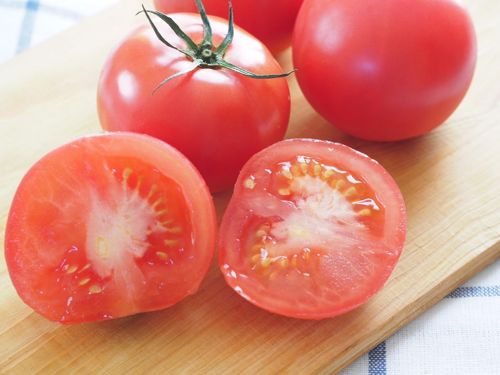 栄養満点のトマト。犬はトマトを食べても大丈夫?