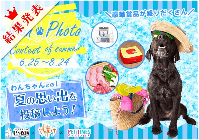 わんフォトコンテスト!Summer☆結果発表