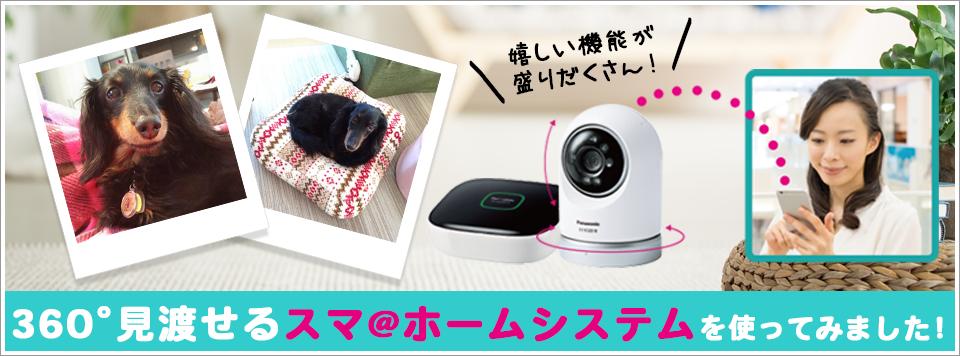 ペットタイムズスタッフがPanasonic「スマ@ホーム システム」屋内スイングカメラを使ってみました