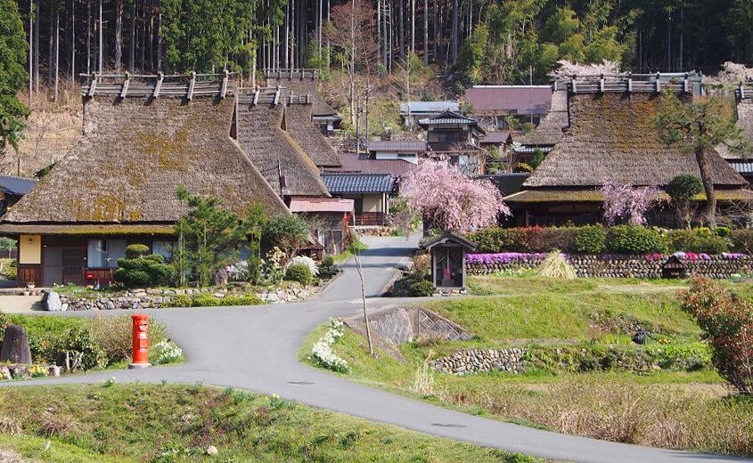 【京都のおすすめおでかけスポット】愛犬と美山かやぶきの里北村に行こう