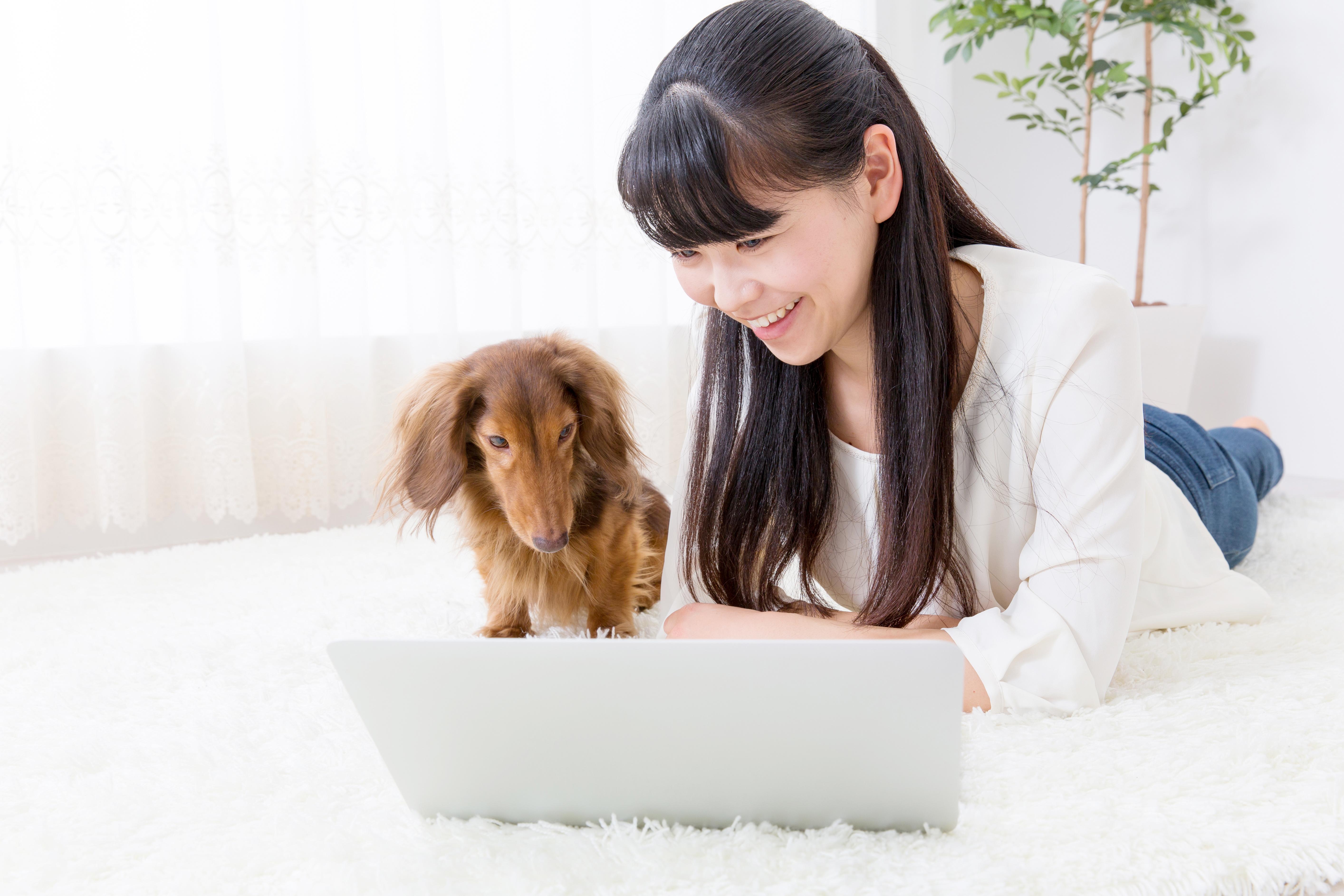 11月1日は犬の日。犬の日の由来って何?犬の日には愛犬とこんなことをしたい!