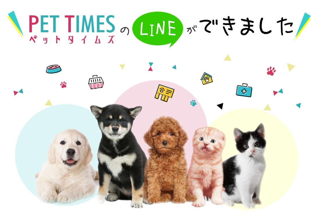 PET TIMESのLINE公式アカウントができました