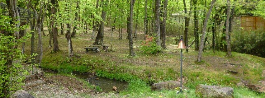 【那須高原のおすすめ立ち寄りスポット】愛犬とフィンランドの森へ行こう