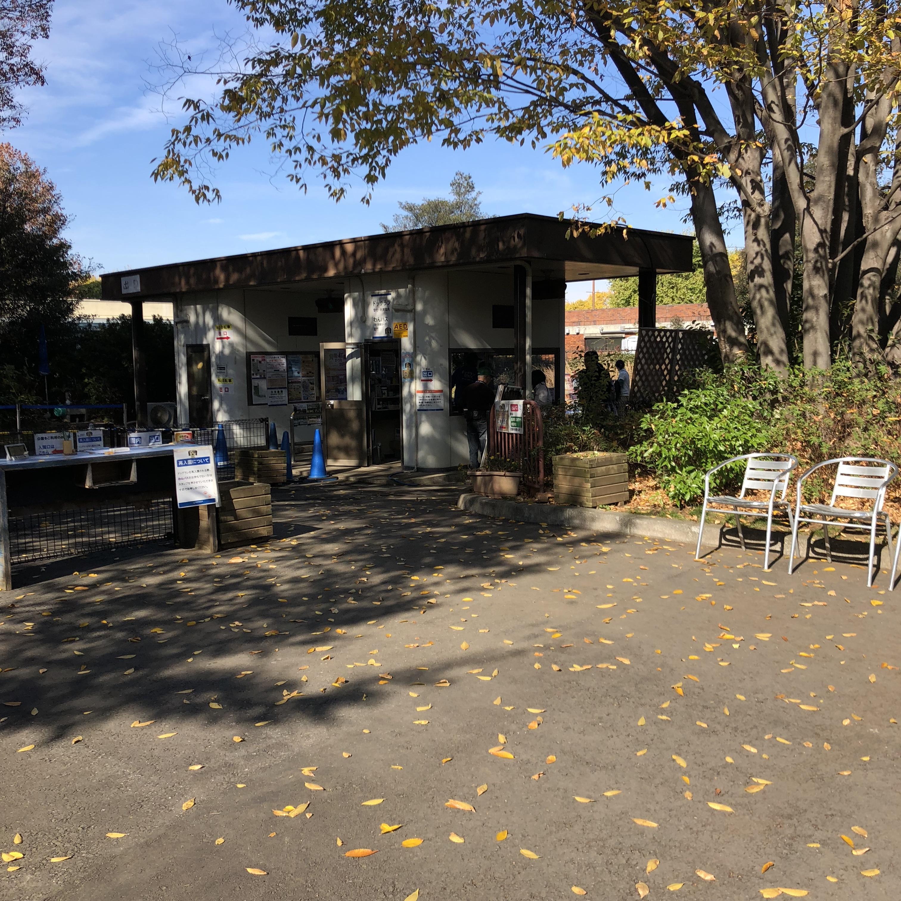 【東京都のおすすめお出かけスポット】立川昭和記念公園のドッグランに行こう