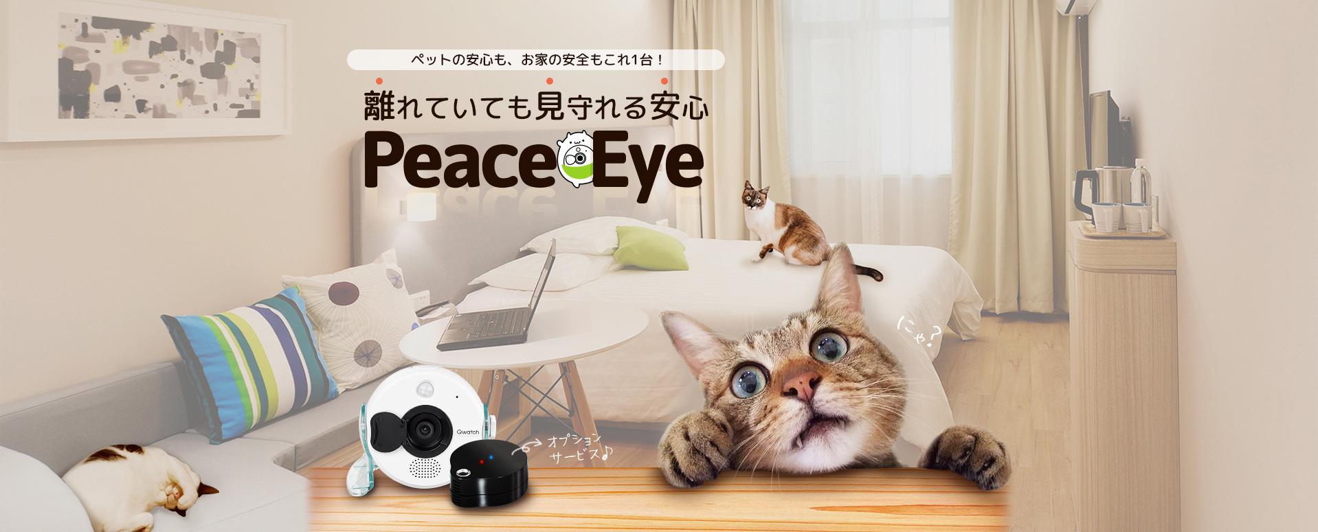 【PR】月額990円のフルHDペットカメラ「ピ―スアイ」を使ってみた【最大2か月無料キャンペーンあり!】