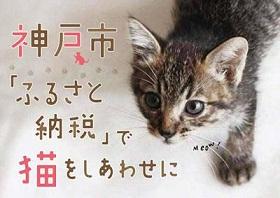 犬猫殺処分ゼロを目指すふるさと納税を活用した動物愛護支援事業を推進しています