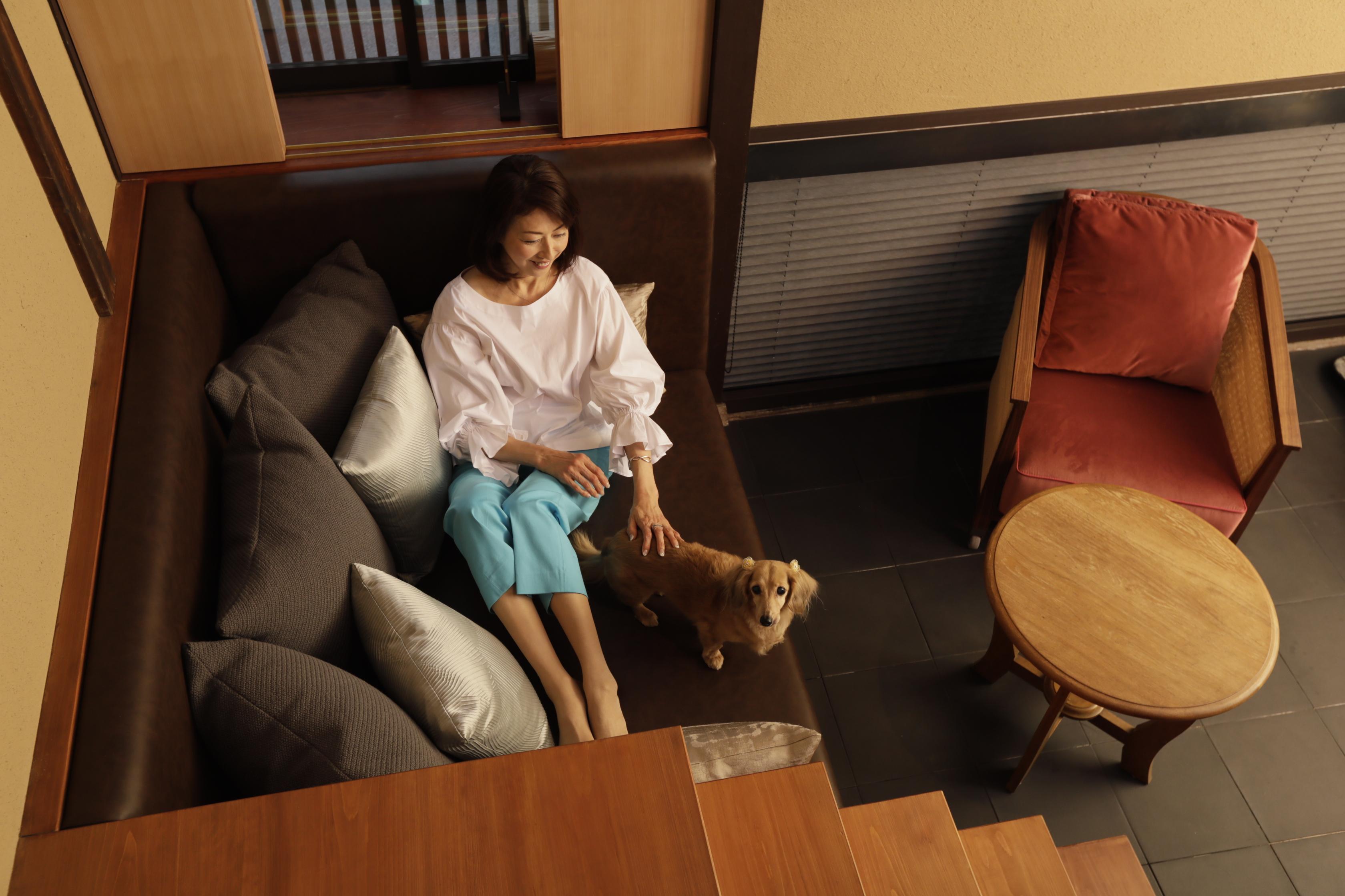 京都・祇園のラグジュアリーホテル「そわか」にペットと泊まれるお部屋が登場