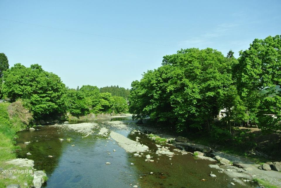 【東京都のおでかけスポット】夏は愛犬と川遊びがしたい!秋川渓谷へ行こう