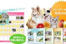 自慢のワンちゃん・ネコちゃんにカレンダーデビューのチャンス!
