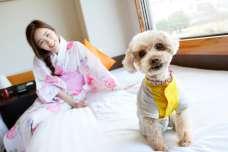 長崎県島原温泉ホテル南風楼にある愛犬同伴専門 『HOTEL KaZeDoG~カゼドッグ』