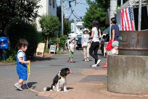 JOHNSON TOWN(ジョンソンタウン)で愛犬と楽しむ方法