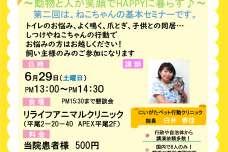 九州初!日本で8名しかいない獣医診療行動学認定医の白井先生を招いた、猫の行動学セミナーを6月29日リライフアニマルクリニックにて開催!