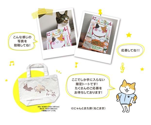 """目指せ、にゃんこマスター!""""愛猫ちゃんの本当の気持ち、わかっていますか?ネコ好きさん必読の『にゃんこドリル』新発売"""