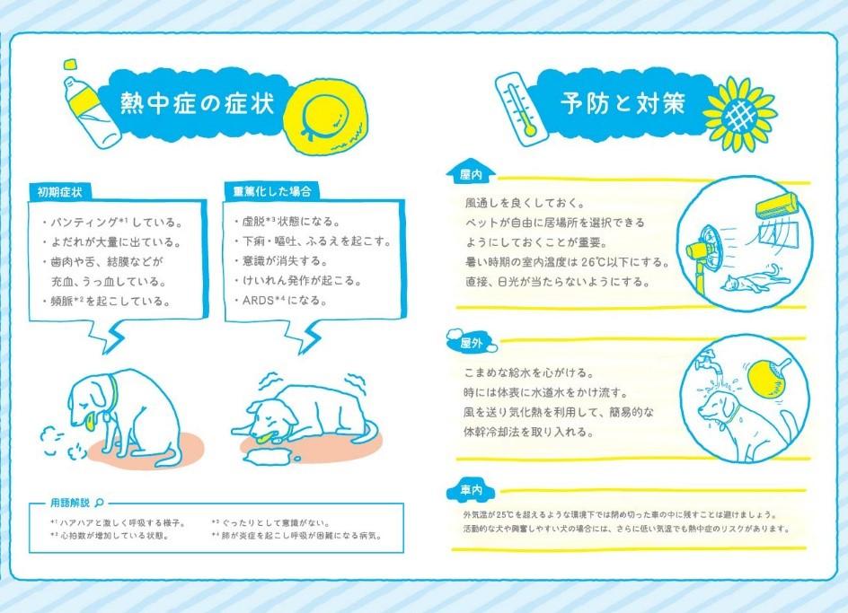 日本動物愛護協会×「熱中症ゼロへ」プロジェクト 愛犬・愛猫の熱中症予防!対策マニュアルを作成