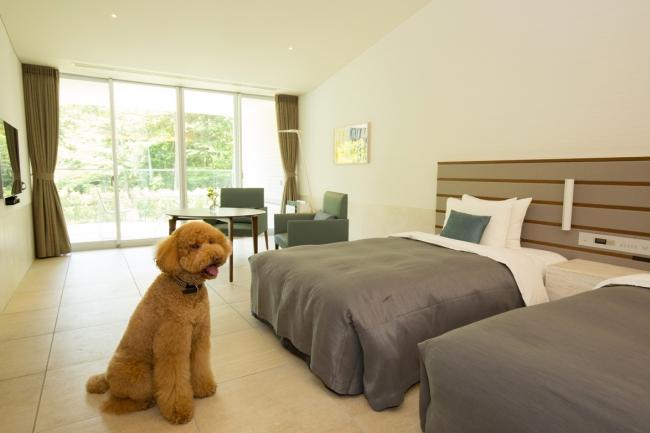 愛犬と夏のリゾートステイを楽しむ、宿泊プラン『ワンちゃんの夏休み』