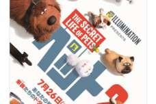 SBIいきいき少短のペット保険×映画『ペット2』「ペットとHappy!プレゼントキャンぺーン」を実施!