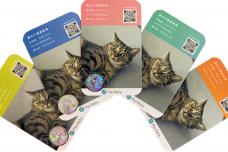 一般家庭の猫向け遺伝性疾患検査サービス