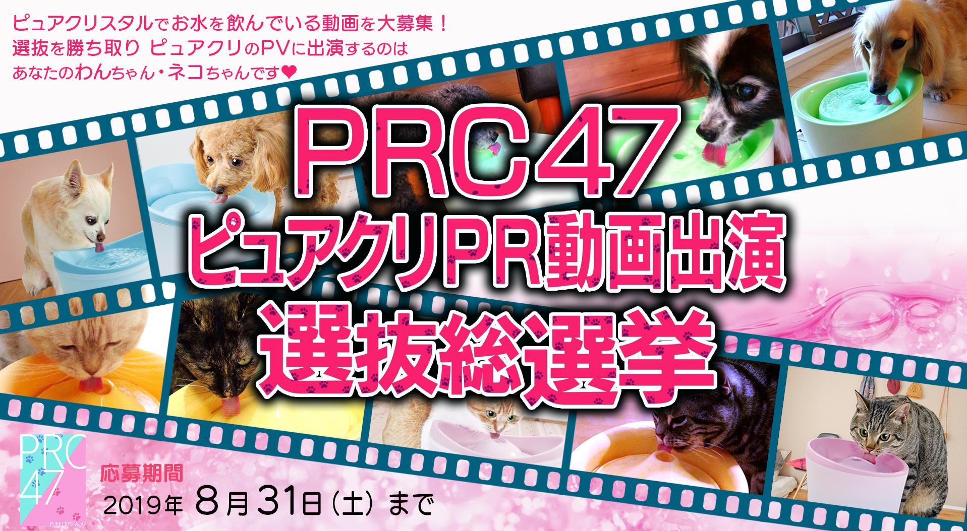 あなたのわんちゃん・ネコちゃんがPR動画に出演!? 「PRC47ピュアクリPR動画出演選抜総選挙」開催!