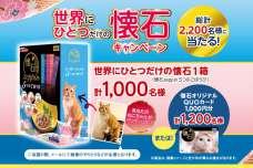 第2回 締切間近!猫オーナー様対象の 「世界にひとつだけの懐石キャンペーン」大好評実施中