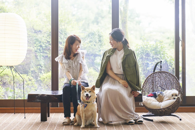 ペットと泊まれるホテル、人気の伊豆高原エリアに2施設目「ペット&スパホテル伊豆ワン」7/16グランドオープン