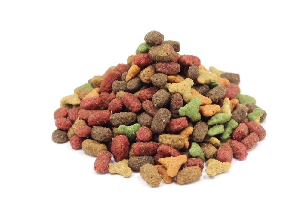 ラグドールに高タンパクでアミノ酸のバランスを考えた食事を与える