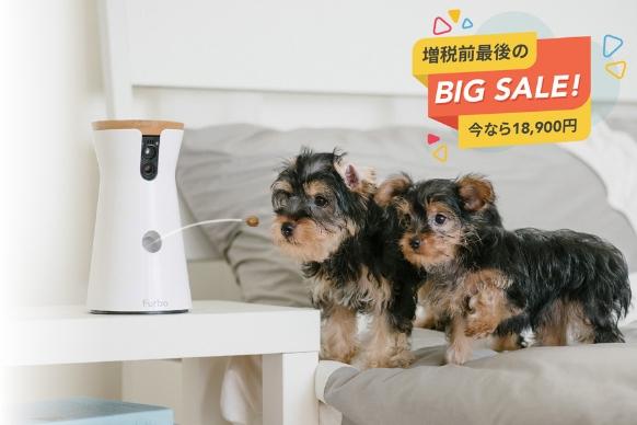 世界中で10秒に1台以上の販売を記録し、10ヶ国でAmazonベストセラーを獲得 Furbo ドッグカメラ 増税前最後のBIG SALE開催決定!