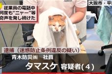 ネコが迷惑防止条例違反で逮捕!? SNSで話題の 『逮捕ネコ タマスケ』グッズ発売開始のお知らせ