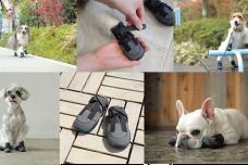 獣医師監修のもと耐久性と軽さにこだわった犬用ブーツ「ドックドッグ いぬくつ」が2019年9月20日(金)より新発売!!