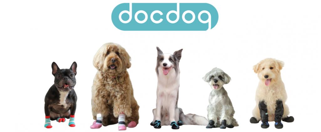 犬の足元周りの悩みにアプローチする 「docdog(ドックドッグ)」とは