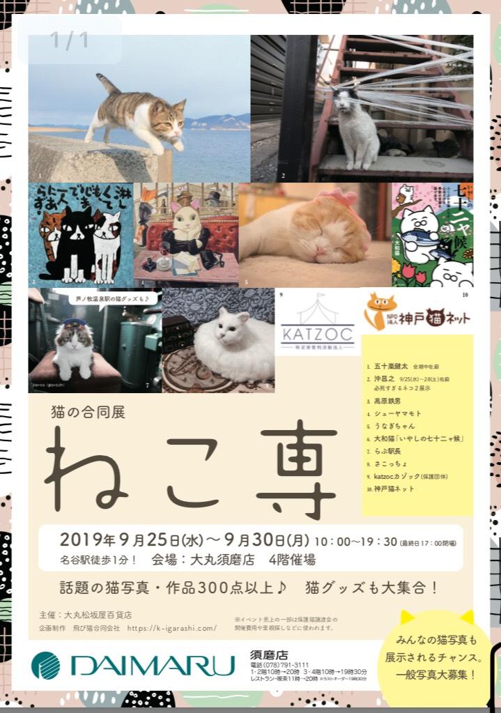 猫をモチーフにした猫の合同展「ねこ専」が 大丸百貨店須磨店で9月25日~30日に開催