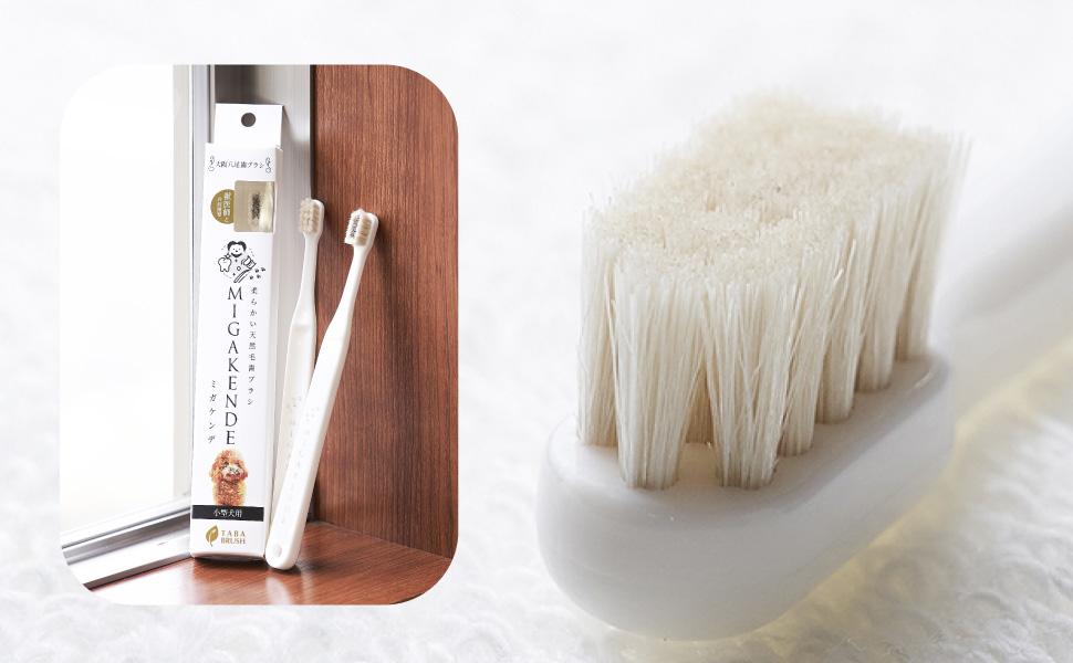 国産の天然毛ペット用歯ブラシ「ミガケンデ」商品概要