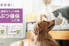日本初!アニコムから「シニア専用」のペット保険。新商品「どうぶつ健保しにあ」を販売開始!